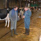 audit d'élevage